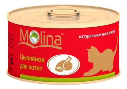 Консервы для котят Molina, цыпленок, 12шт, 80г