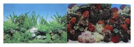 Фон для аквариума Prime Кораллы/Растительный, винил, 100x50 см