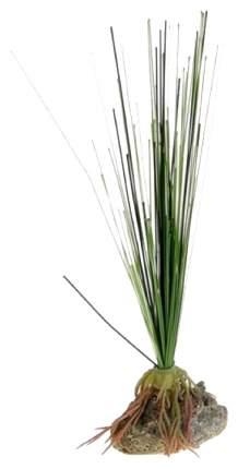 Искусственное растение Tetra DecoArt Аир 15 см шелковое 203778