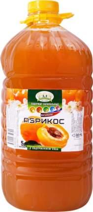 Напиток Прогулка по саду абрикос с содержанием сока 5 л
