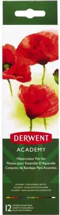 Акварель Derwent Academy 12 цветов