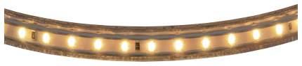 Лента светодиодная теплый белый цвет Lightstar 3014 402032 1 метр