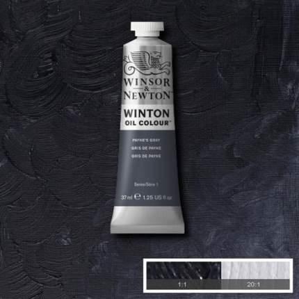 Масляная краска Winsor&Newton Winton серая пейна 37 мл