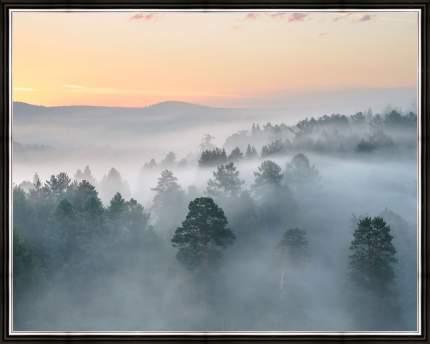 """Картина в багете 50х40 см """"Лес в тумане"""" Ekoramka BE-103-311"""