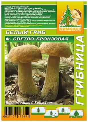 Мицелий грибов Грибница субстрат микоризный Белый гриб Светло-бронзовый, 1 л Симбиоз