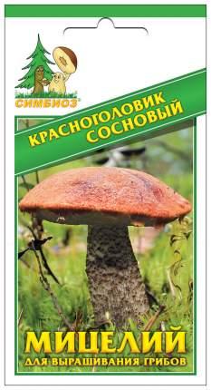 Мицелий грибов Зерновой Красноголовик Сосновый, 30 мл Симбиоз