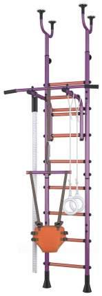 Детский спортивный комплекс Polini Sport Neo Фиолетовый враспор