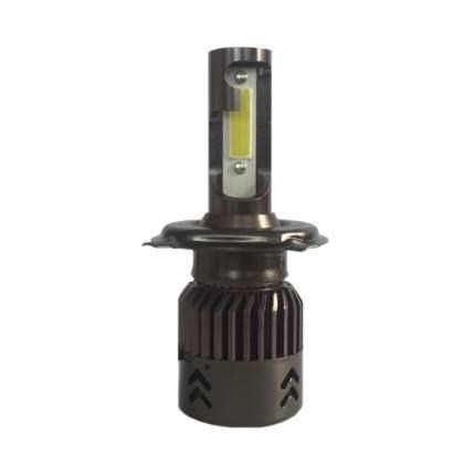 Светодиодные лампы  Akamo FN6H4