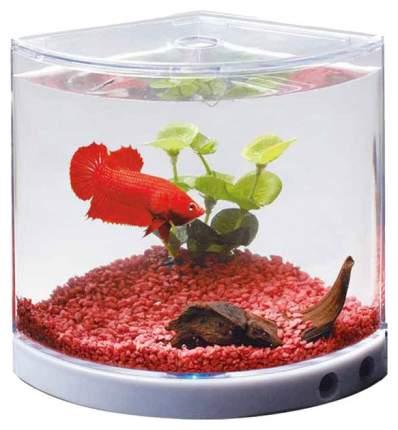 Аквариум для рыб KW Zone Dophin угловой, с изогнутым стеклом, 1,4 л