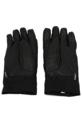 Перчатки мужские THE NORTH FACE T0A6L3JK3 черные 6.5