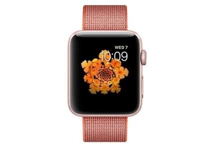 Смарт-часы Apple Watch Series 2 42mm (MNPM2RU/A)