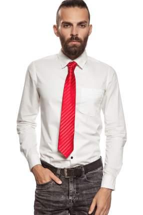 Классический галстук Жаркий полдень Signature 204367 красный