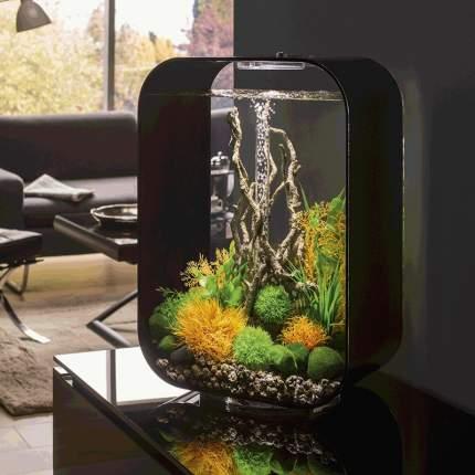 Декорация для аквариума biOrb Moorwood Коряга, большая, 23х17х42см