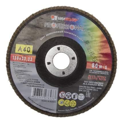 Диск лепестковый для угловых шлифмашин ЛУГА 3656-150-40