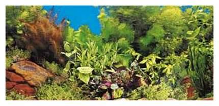 двухсторонний скалисто-растительный/голубой 30см (цена за 10см)
