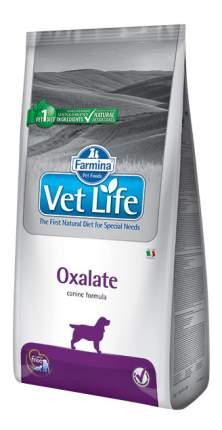 Сухой корм для собак Farmina Vet Life Oxalate, при цистите, злаки, 12кг