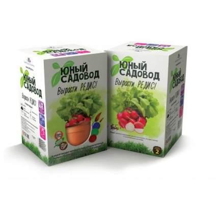 Набор для выращивания Юный садовод Вырасти редис 406 редис