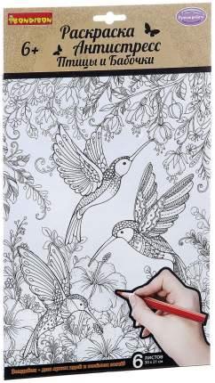 Набор Раскрасок Антистресс Bondibon Птицы и Бабочки, 6 Листов