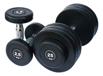 Гантельный ряд Body Solid FDS-09 от 2,5 до 25 кг