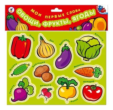 Набор магнитных карточек Овощи, фрукты, ягоды Дрофа Мои первые слова