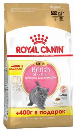 Сухой корм для котят ROYAL CANIN British Shorthair Kitten, британская,домашняя птица,0,8кг
