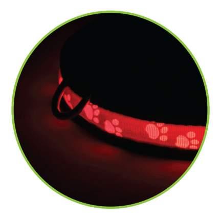 Triol LD08M Светодиодный ошейник Лапки для собак, размер M
