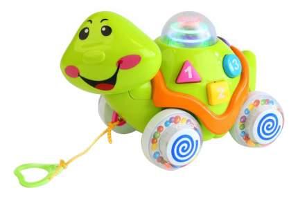 Игрушка-каталка Обучающая черепаха Умка Львенок и черепаха
