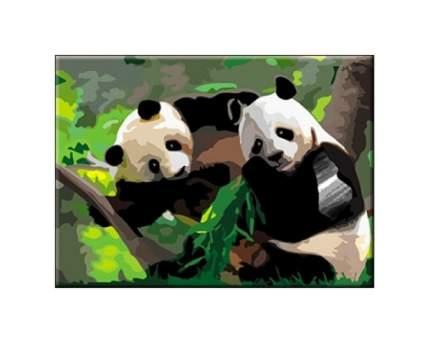 Раскраска по номерам панды а3 Рыжий кот р-5509