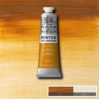 Масляная краска Winsor&Newton Winton натуральная сиена 37 мл