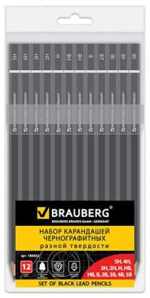 Набор карандашей чернографитных BRAUBERG Touch line 180652 Черный 12 шт