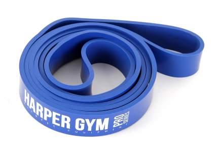 Эспандер Harper Gym NT961Z синий
