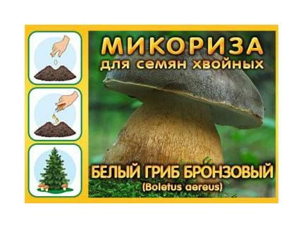 Мицелий грибов Грибница субстрат микоризный Белый гриб Бронзовый, 1 л Симбиоз