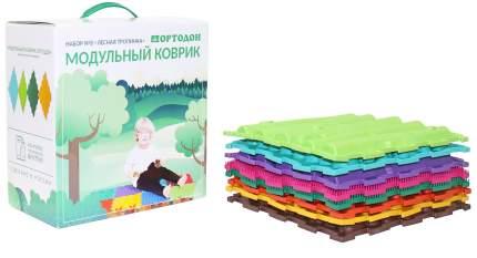 Модульный коврик ОРТОДОН Набор №8 Лесная тропинка