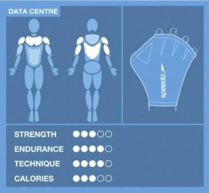 Перчатки для аквафитнеса Speedo Aqua Glove L синие (0309)