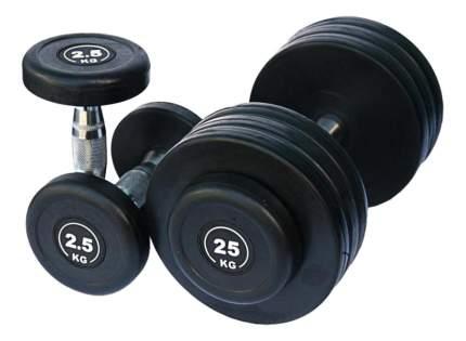 Гантельный ряд Dayu Fitness DB182 от 2,5 до 25 кг