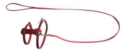 Комплект амуниции для собак Аркон, поводок + шлейка, кожаный, цвет красный