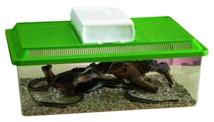 Террариум для рептилий, для черепах Savic Fauna Box Low, зеленый, 50,5 x 17 x 30,5 см
