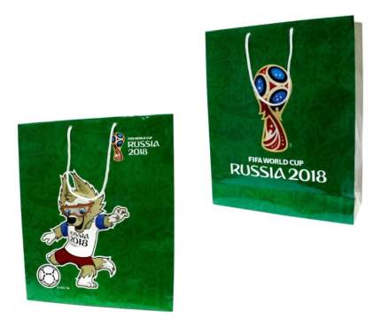 Пакет подарочный FIFA-2018 Зеленый Т11903