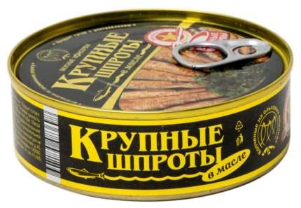 Шпроты в масле Вкусные консервы крупные 240 г
