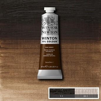 Масляная краска Winsor&Newton Winton натуральная умбра 37 мл