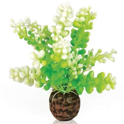 Искусственное растение для аквариума biOrb Водная зеленая каулерпа, 13см