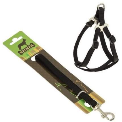 Комплект Поводок и шлейка Каскад нейлон черный для собак (120 см + 20/40 см, Черный)