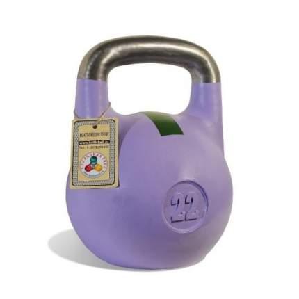 Гиря чемпионская Titan 22 кг (фиолетовая с зеленой полосой)