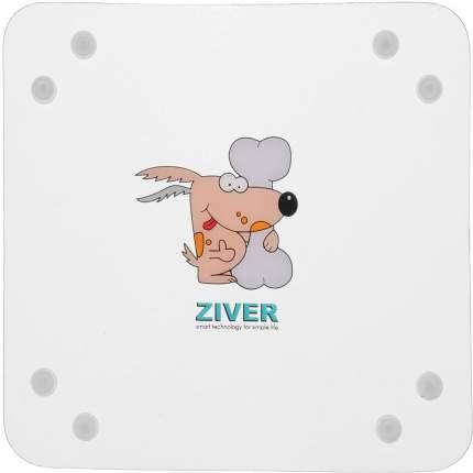 Одинарная миска для кошек и собак ZIVER, пластик, прозрачный, 0.15 л
