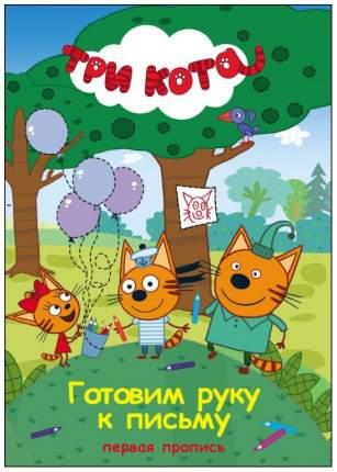 Книга проф-Пресс Готовим Руку к письму