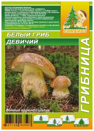 Мицелий грибов Грибница субстрат микоризный Белый гриб Девичий, 1 л Симбиоз