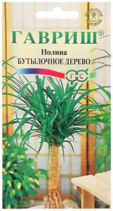 Семена Нолина (бокарнея отогнутая) Бутылочное дерево, 3 шт, Гавриш