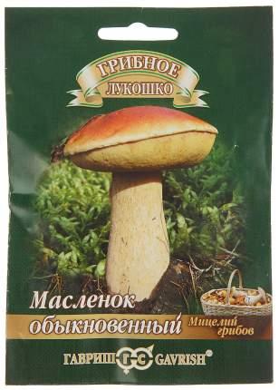 Мицелий грибов Гриб Масленок Обыкновенный на зерновом субстрате, 15 мл Гавриш