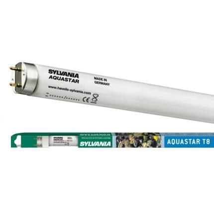 Лампа Sylvania T8 Aquastar 15Вт 43.8см