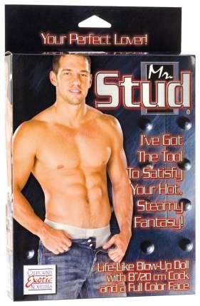 Надувная секс-кукла California Exotic Novelties Mr. Stud